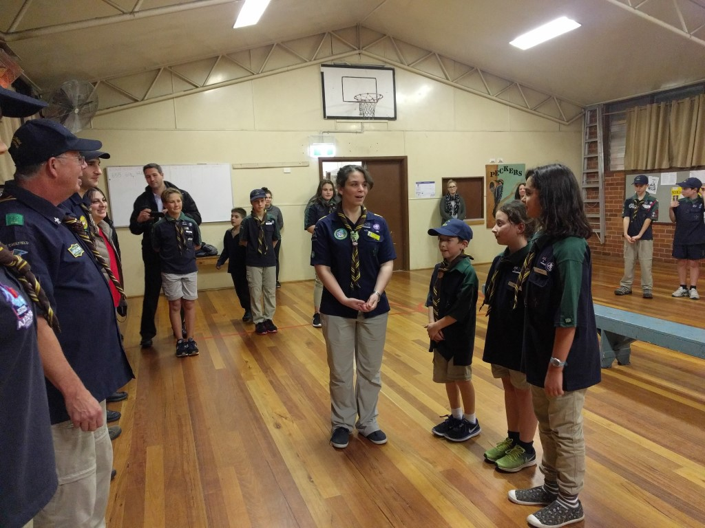 From Cubs to Scouts